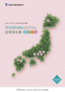 tocollabo-report2014